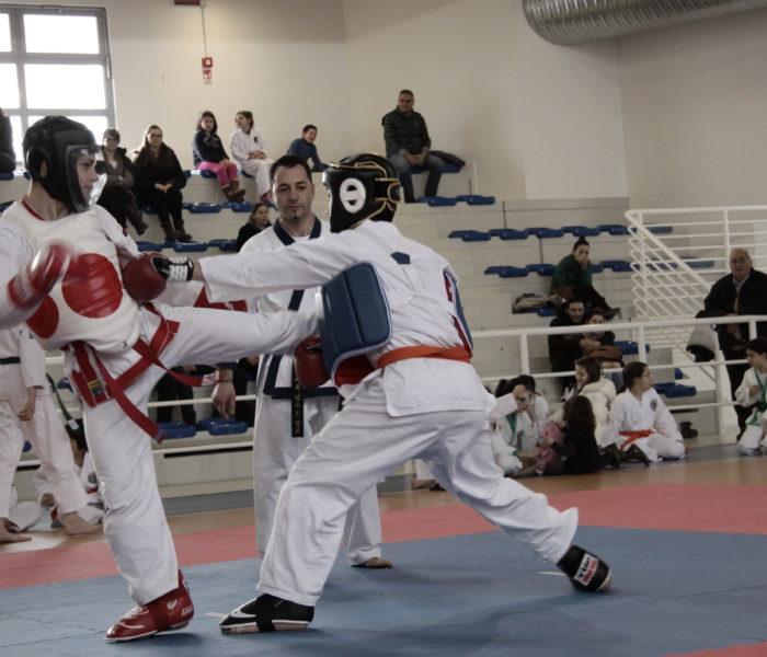 Torneo open Conegliano Veneto8