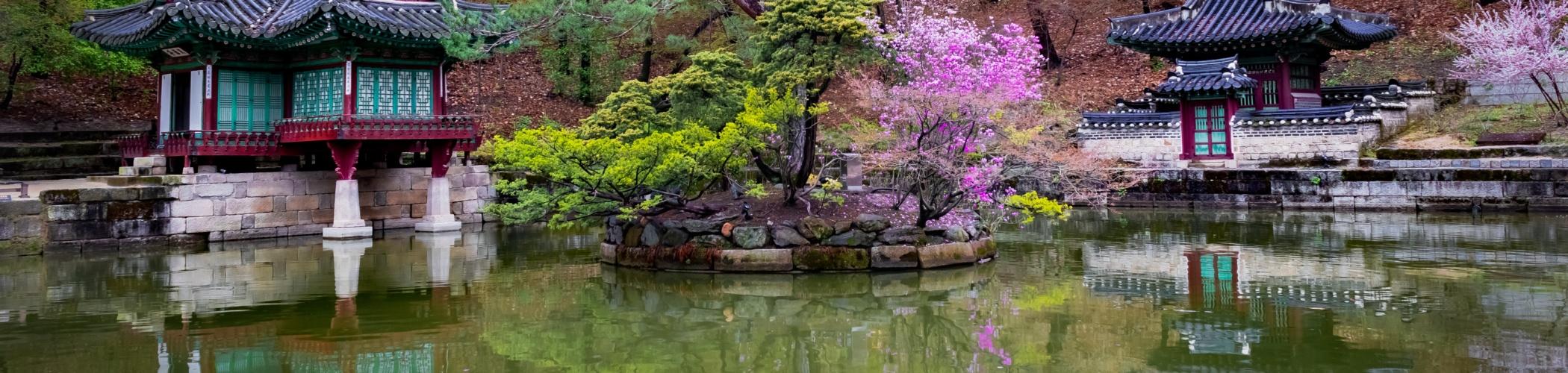 http://www.tangsoodoitalia.com/wp-content/uploads/2021/06/early-spring-buyongji-pond-gardens-changdeokgung-palace-2100x500.jpg
